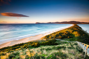 Full-Day Guided Bruny Island Tour...