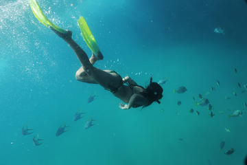 Glass Bottom Boat and Snorkel Tour in Los Cabos