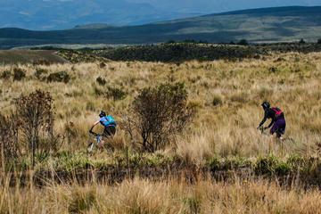 Antisana Bikes