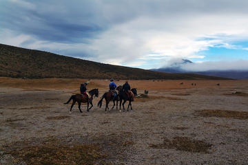 Avenue of Volcanoes Horseback Riding from Quito