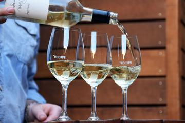 Small-Group Wine Bars Walking Tour in Adelaide