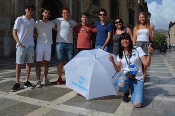 Premium Walking Tour of Granada (2hr)
