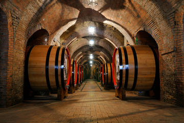 Honeymoon Organic Bio Wine and Food Tour In Chianti included also San Gimignano