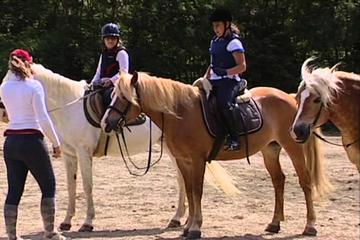 Horse Back Riding in Chianti hillsides & Wine Tour in the famous Chianti region