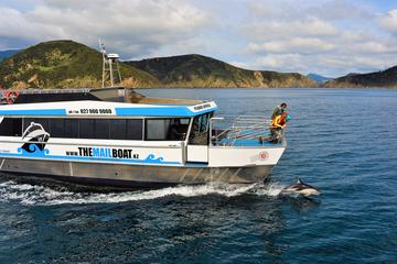 Marlborough Sounds Mail Boat Cruise