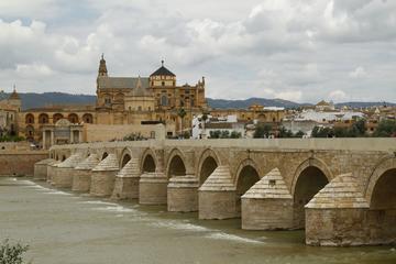Full-day Cordoba Tour from Seville...