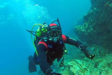 Scuba Diving in Jala Bay