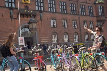 コペンハーゲンハイライト:3時間自転車ツアー