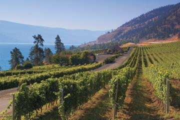 Day Trip Beat the Bottleneck: Summerland Full-Day Wine Tour near Kelowna, Canada