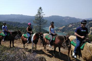 90-Minute Small-Group Guided Sonoma Horseback Adventure