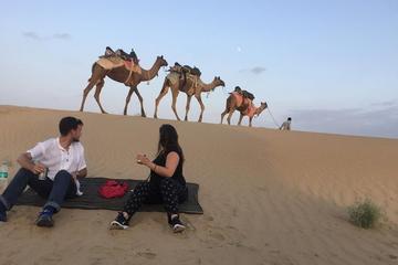 Mezza giornata Camel Safari Sunset