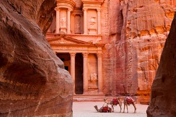 Full-Day Tour to Petra