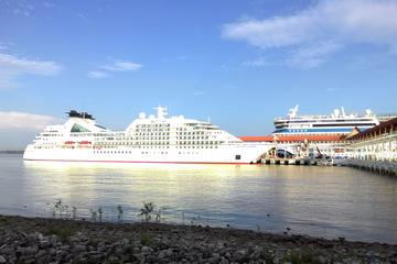 Base On per Vehicle Price To KL Tour Cruise Excursions from Port Klang Cruise