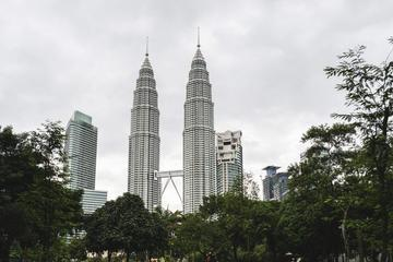 Private KL City And Fireflies Day Tour ( includes Lunch And Seafood Dinner )