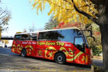 Downtown and Panorama 2-Day Hop-on-Hop-off Bus Tour in Seoul
