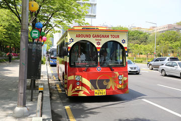 Hop-On Hop-Off Around Gangnam with Audio Guide