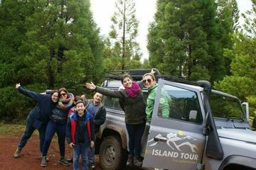 Full day Tour 4x4