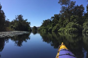 3 Day Self-Guided Noosa Everglades...