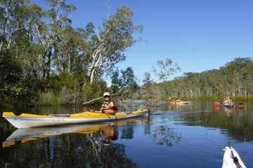 Self-Guided Noosa Everglades Kayak Tour
