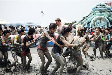 Boryeong Mud Festival from Seoul