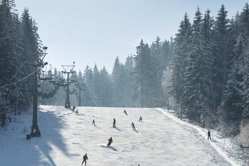 Elysian Ski Day Trip from Seoul