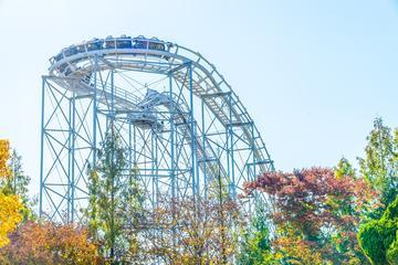 Everland Theme Park Admission Ticket...