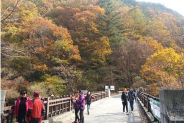 Scenic Jiri Mountain One Day Tour