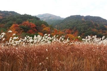Spectacular Juwang Mountain One Day Tour