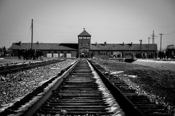 Auschwitz Birkenau and Wieliczka Salt Mine - Full Day Tour