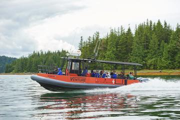 Alaskan Lodge Adventure & Seafeast