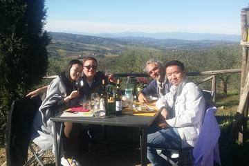 Discover Organic and Biodynamic Chianti Small Wineries - Small Groups Fday tour