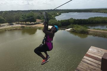Book Tampa Bay Zipline Adventure on Viator