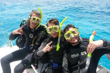Scuba Diving Training Course