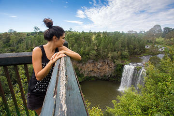 Boutique Brisbane to Cairns Australian east coast tour - 7 Day small group
