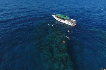 Kaanapali Ocean Adventures  - Sanity Snorkel Vessel -  Half day 4...