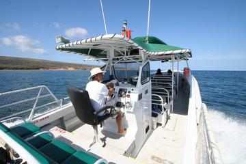 Kaanapali Ocean Adventures  - Sanity Snorkel Vessel Private Charters