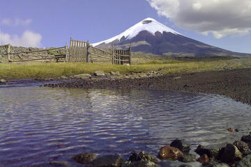 Private Sightseeing Tour of Cotopaxi...