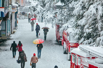 Five Nights Charming Shimla & Manali Tour from Delhi