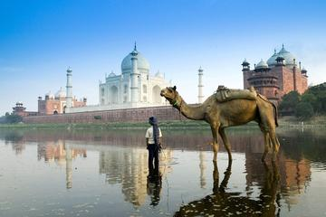 Full Day Private Taj Mahal & Agra Hidden Gems Tour from New Delhi