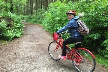 5-Hour Small-Group Vancouver Bike Tour