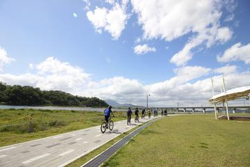 Small Group Afternoon Bike Tour: Seoul and the Han River