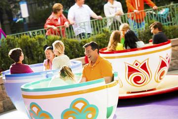 Ingresso de 5 dias para Disneyland Resort