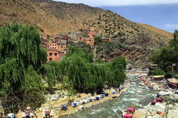 Berber Trails 4WD Guided Day Trip from Marrakech including Lunch