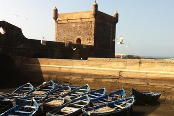 Excursión de un día desde Essaouira a Marrakech