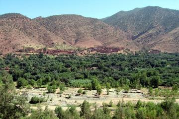 Vallée de l'Ourika: excursion d'une journée au départ de Marrakech