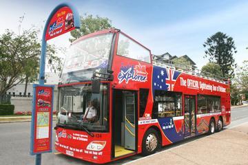 ブリスベン乗り降り自由バス ツアー