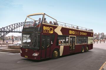 Hop-on-Hop-off-Tour zwischen Sydney...