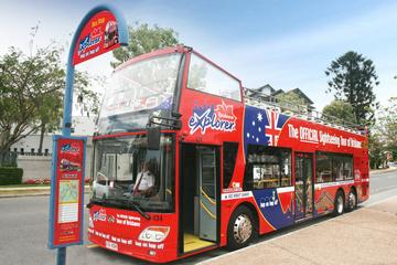 Tour Hop-On Hop-Off in autobus di Brisbane