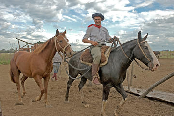 Full-Day in San Antonio de Areco: Colonial town and Estancia from...