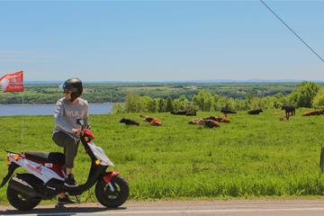 Guided scooter tour on Ile d'Orleans